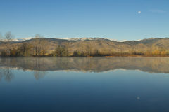 Coot ranku jeziornej księżyc Ustaleni odbicia Obrazy Stock