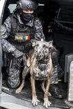 Cop simulating a mission with dog Royalty Free Stock Images