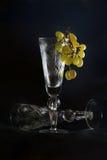 Copa cristalina Imagen de archivo libre de regalías