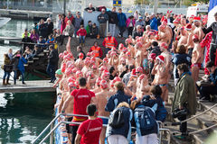 Copa de Nadal de Natacio open water swim in Barcelona Stock Images