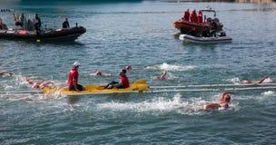 Copa de Nadal de Natacio open water swim in Barcelona Stock Photos