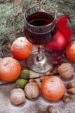 Copa de vino con las frutas y las nueces Fotografía de archivo libre de regalías