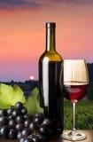 Copa de vino roja Fotos de archivo libres de regalías