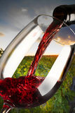 Copa de vino roja Imágenes de archivo libres de regalías