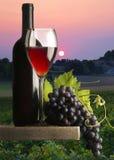 Copa de vino roja Imagen de archivo libre de regalías