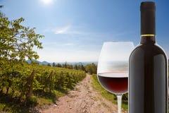 Copa y botella de vino rojo Fotografía de archivo libre de regalías