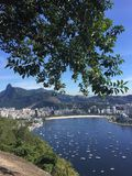 Copacabana Beach, nature, water, tree, vegetation. Copacabana Beach is nature, vegetation and water resources. That marvel has water, sky and biome and that royalty free stock photos
