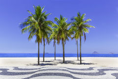 Copacabana beach with palms and sidewalk Stock Photography