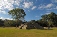 Copan Archeological park Stock Photography