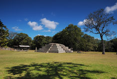 Copan Archeological park Royalty Free Stock Images