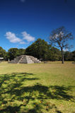 Copan Archeological park Royalty Free Stock Photo