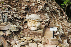 Copan Archeological Park in Honduras Royalty Free Stock Image