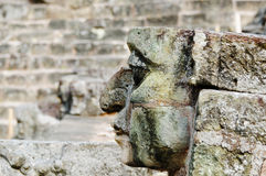 Copan Archeological Park in Honduras royalty free stock images