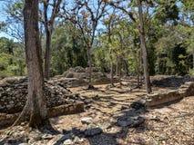 Copan arkeologisk plats av Mayan civilisation, inte långt från gränsen med Guatemala Det var huvudstaden av det huvudsakliga klas royaltyfria bilder