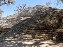 Copan arkeologisk plats av Mayan civilisation, inte långt från gränsen med Guatemala Det var huvudstaden av det huvudsakliga klas arkivbilder