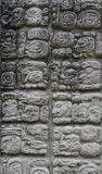 Copan carvings Royalty Free Stock Photography