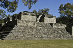 Copan, Mayan Ruins, Honduras Royalty Free Stock Photo