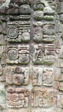 Copan, Honduras Royalty Free Stock Images