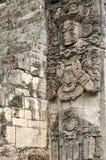Copan Majskie ruiny w Honduras Obrazy Stock