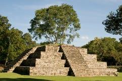 Copan - pyramide maya Imagen de archivo