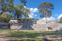 Copan Ruinas Royalty Free Stock Images