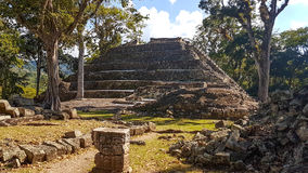 Copan Ruinas Royalty Free Stock Photos
