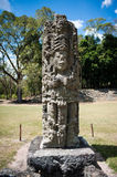 Copan Ruins Royalty Free Stock Photo