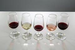 Copas de vino para la degustación de vinos fotografía de archivo libre de regalías