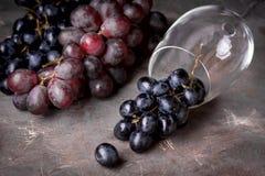 Copas de vino rojas y fondo horizontal del fondo de la uva roja de la botella con el vino rojo y el vidrio arriba Fotografía de archivo