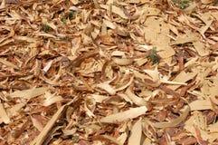 Copeaux en bois Image libre de droits