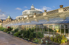 Copenhagen Botanical Garden greenhouses Stock Photos
