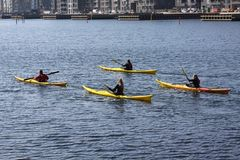 Group of kayaker paddling in kayak by the sea rowing, active water sport and leisure, kayaking Royalty Free Stock Photos
