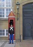 Royal Guard in Amalienborg Castle, Copenhagen Royalty Free Stock Photos