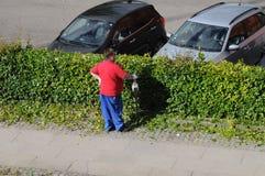 LANDSCAPER CUTS BUSHES IN COPENHAGEN. Copenhagen/Denmark 21..August 2018_ .Danish landscape in danish capital. Photo.Francis Joseph Dean / Deanpictures Stock Photo