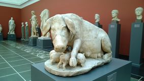 One of the sculptures in the Glyptothek Museum. Pig feeding piglets stock photos