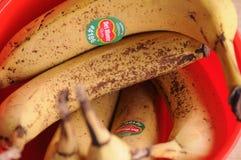 BANANA FRUIT IN BAWL. Copenhagen / Denmark, 24.FEB 2018_ Banana fruits in a plastic bawl. .Photo by Francis Joseph Dean/Deanpictures stock photo