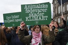 climate CHANGE PROTEST RALLY IN COPENHAGEN DENMARK stock image