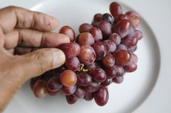 GRAPES STONELESS Royalty Free Stock Images