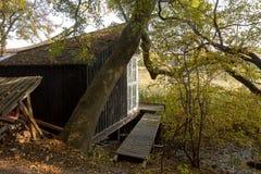 COPENHAGUE, DANEMARK - octobre 2018 : Petite cabine dans la forêt, près de Freetown Christiania, un autonome auto proclamé photos libres de droits