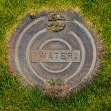 Coperchio di botola dell'acqua in erba Fotografie Stock