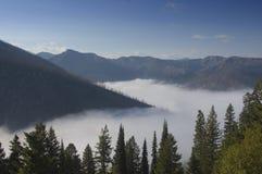 Coperta di nebbia Immagini Stock