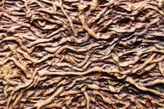 Copertura di gomma del ` s del taccuino di Brown come imitazione di struttura di legno immagini stock