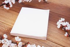 Copertura di rivista alta falsa realistica con il fiore, su fondo di legno fotografie stock libere da diritti