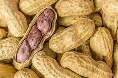 Coperture aperte dell'arachide fotografia stock