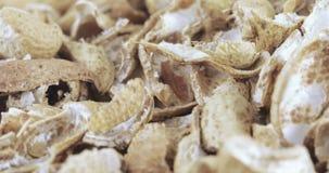 Coperture arrostite dell'arachide archivi video