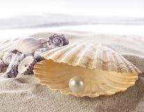 Coperture con una perla fotografie stock libere da diritti