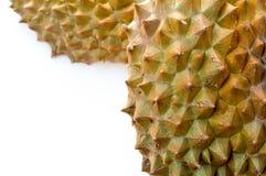 coperture del durian nel fondo bianco Fotografia Stock Libera da Diritti