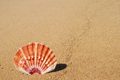 Coperture del mare sulla sabbia Fotografie Stock