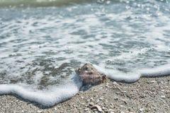 Coperture del mare sulla sabbia Immagine Stock Libera da Diritti