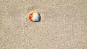 Coperture del mare sulla sabbia Priorità bassa della spiaggia di estate Vista superiore Immagini Stock